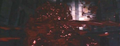 Thumbnail for version as of 20:32, May 13, 2010