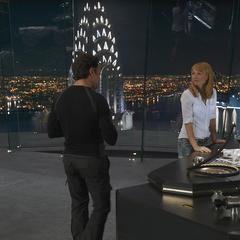 Stark & Potts.