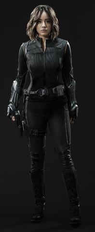 File:Shield Agent Quake.png