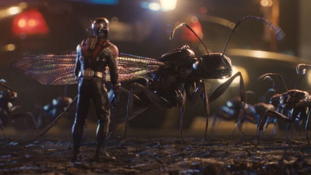 File:Ant-Man Still 18.jpg