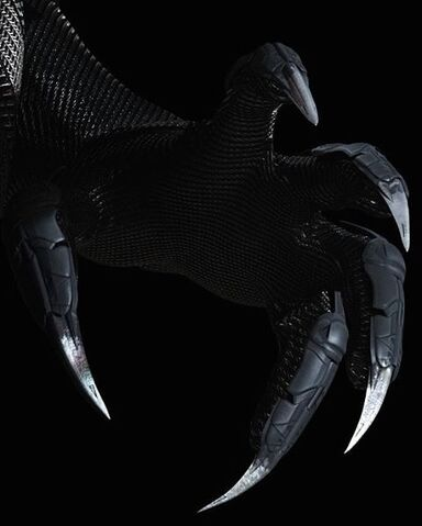 File:Talons of Black panther.jpg