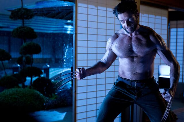 File:TW Wolverine.jpg