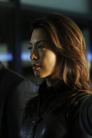 File:Agents of SHIELD End of the Beginning 18.jpg