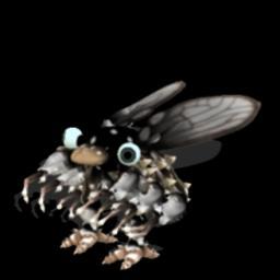 File:Fruit Fly2.jpg