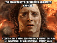 Lord of the Rings Choices