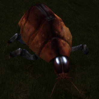 File:Creatures Space Beetle.PNG