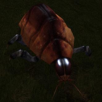 Fájl:Creatures Space Beetle.PNG
