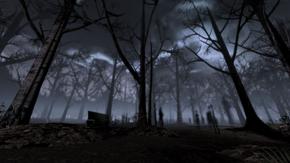 Trees of memory - skyline