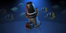 Aquarium VI