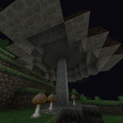 Huge Brown Daendroc Mushroom