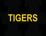 Hamilton Tigers.png