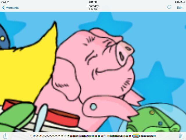 File:Polly pig.jpg