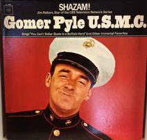 Gomer Pyle LP