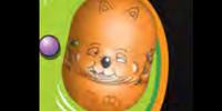 Wombat bean