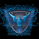 Runehawk logo