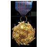 Lead Defense Medal
