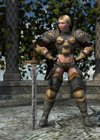 File:Female Paladin.jpg