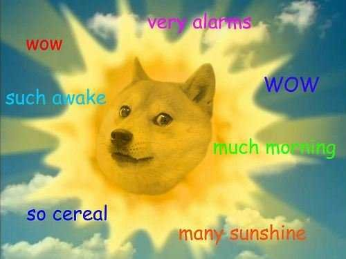 Doge sun