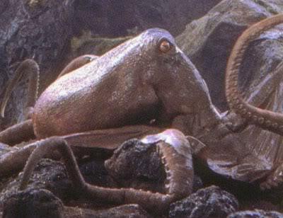 File:Oodako the giant octopus that debuted in King Kong versus Godzilla.jpg