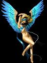 Angel DSSH