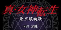 Shin Megami Tensei: Tokyo Requiem