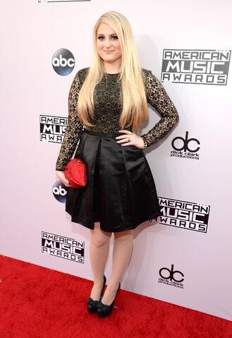 File:2014-american-music-awards-red-carpet-1.jpg