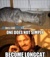 Funny-pictures-one-does-not-simply-become-longcat