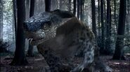 Questing Beast1