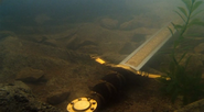 Excalibur at the bottom of the Lake of Avalon