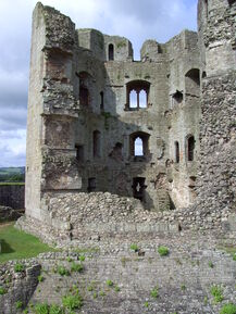 Raglan Castle (2)