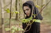 Morgana tree