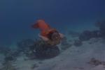 Marina From Power Rangers 10
