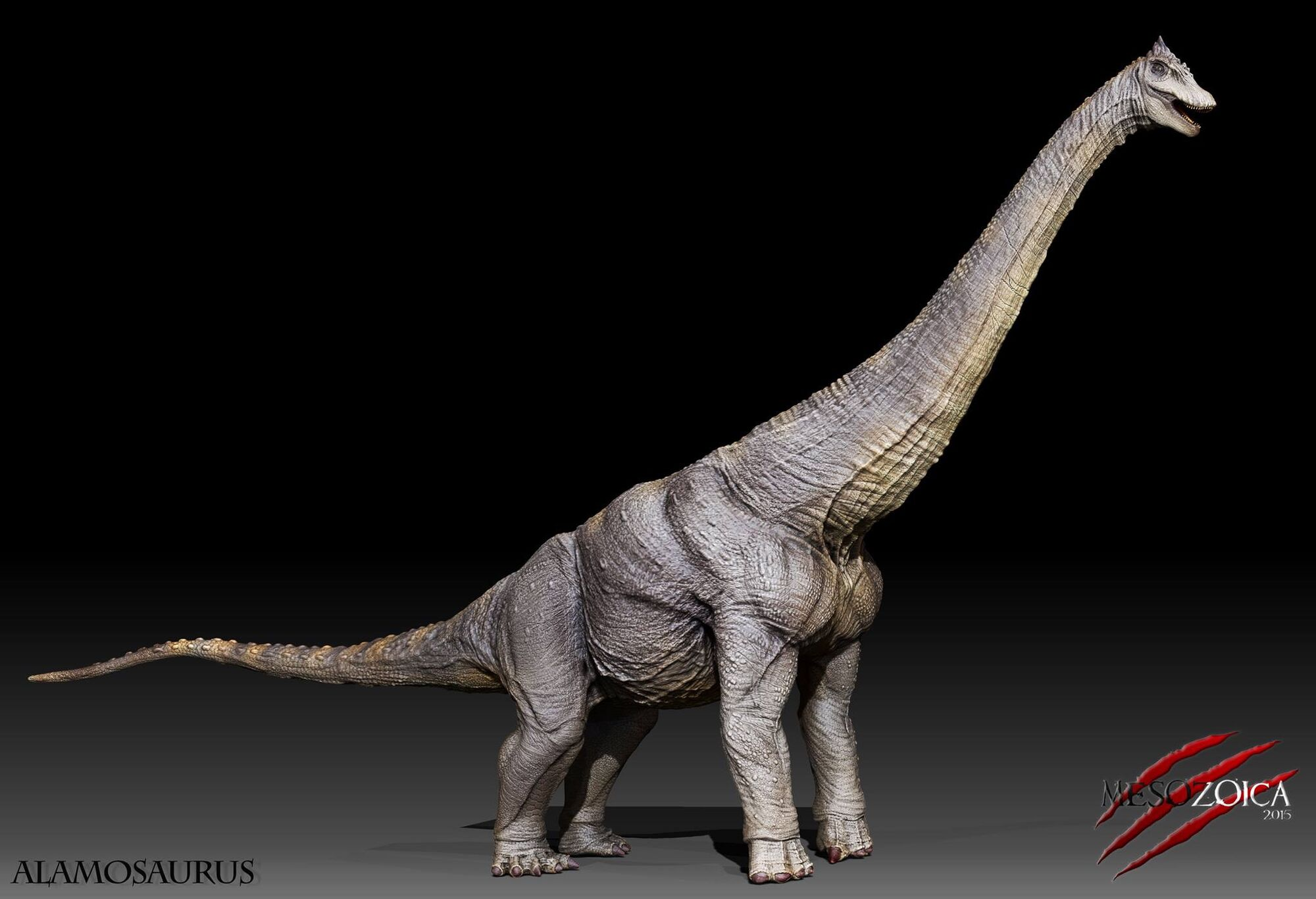Alamosaurus | Mesozoica game Wikia | FANDOM powered by Wikia