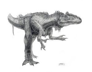 Allosaurus-Todd-Marshall