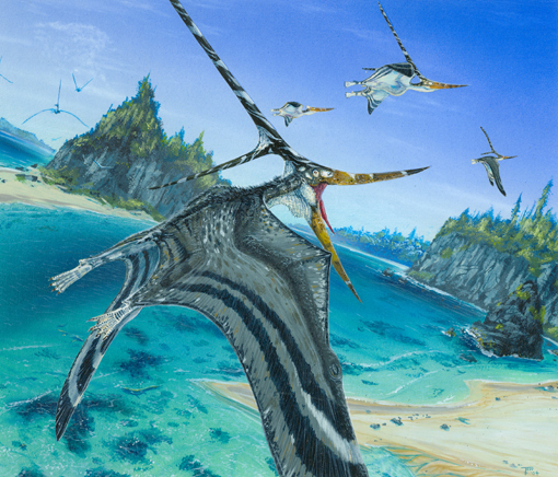 File:Nyctosaurus final.jpg