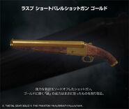 Gun rasp