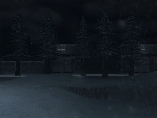 File:Snowfield Pic 1 (Metal Gear Solid The Twin Snakes).jpg