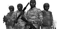 Mercenarios de Gurlukovich