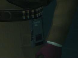 Fortune device on Ocelot