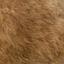 Ddog hair5