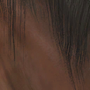 File:Dhorse hair2.png