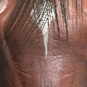 File:Dhorse head2.png
