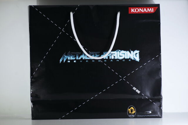 File:Metal-gear-rising-press-kit-01.jpg