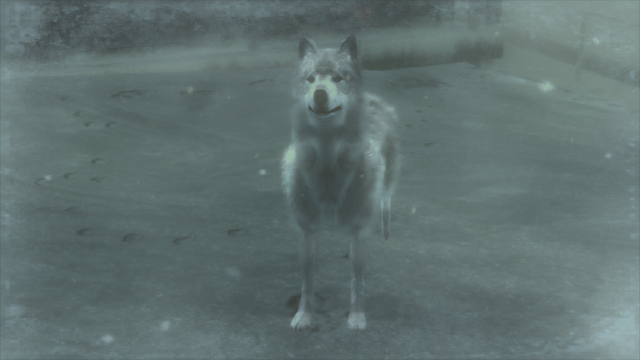 File:A wolf in the snowfield (Metal Gear Solid 4).png