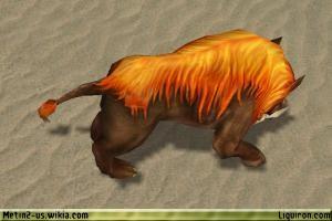 File:Red Wild Boar 3.jpg