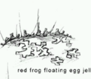 Red frog floating egg jelly