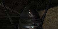 Metroid Cocoon