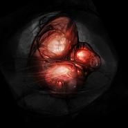 Ing orb
