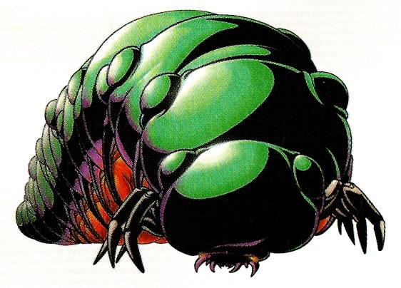 Fichier:Kirugiru larva.jpg