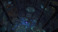 Fungal Hall Access